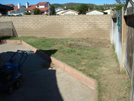 Before Fake Grass