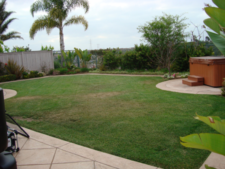 Before Synthetic Turf